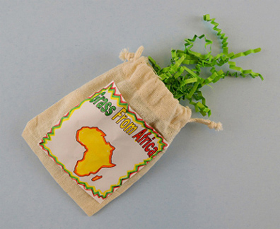 african-grass
