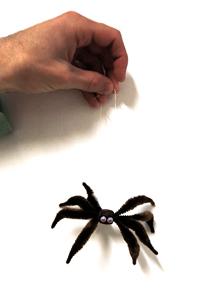 dangling arachnid