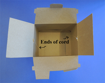 ends of cord