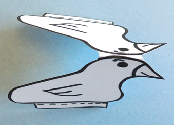 bird step 1