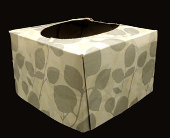cut tissue box