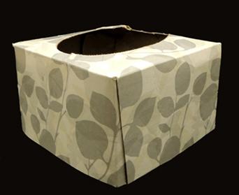 cut tissue box