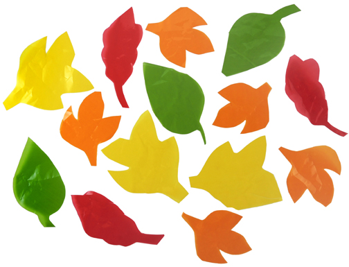 crunchy colorful leaves